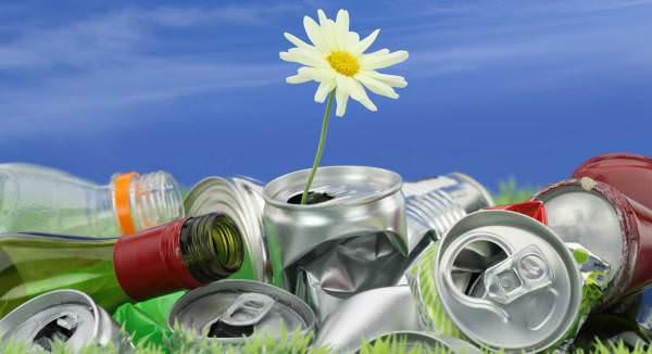 Заводы по переработке отходов. Перспективы и реалии бизнеса