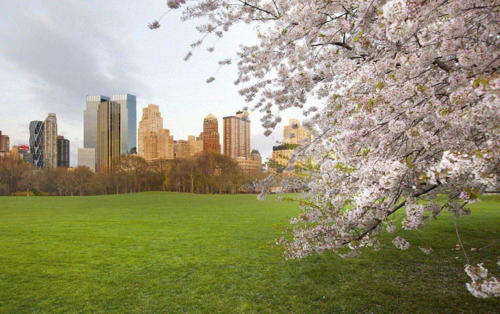 Підготовка систем будівлі до весняно літнього сезону