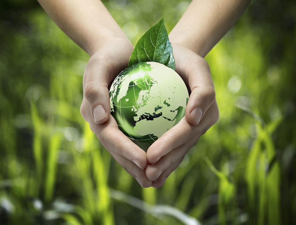 Как выбрать экологичные средства для уборки коммерческих помещений